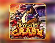 Coyote Crash